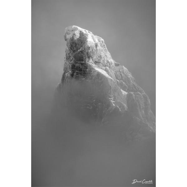 Apparition - Noir & Blanc